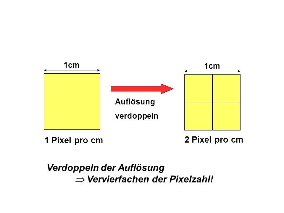 Verdoppeln der Auflösung Vervierfachen der Pixelzahl! 1cm 1 Pixel pro cm 1cm 2 Pixel pro cm Auflösung verdoppeln