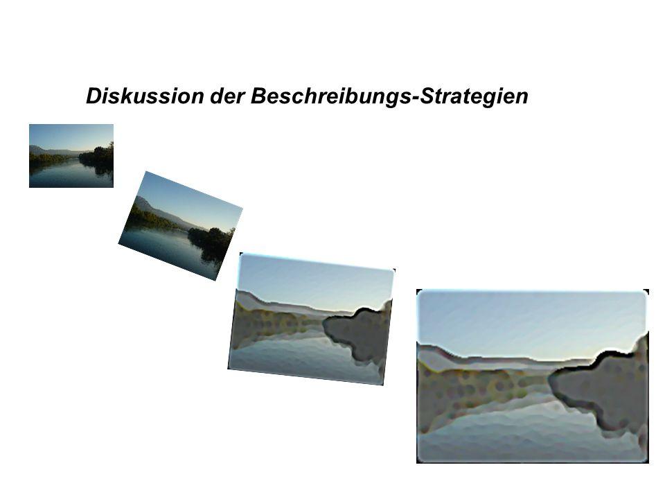Diskussion der Beschreibungs-Strategien