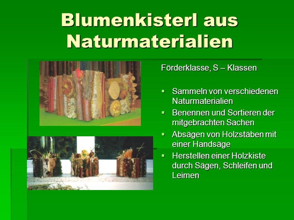 Blumenkisterl aus Naturmaterialien Förderklasse, S – Klassen Sammeln von verschiedenen Naturmaterialien Sammeln von verschiedenen Naturmaterialien Ben