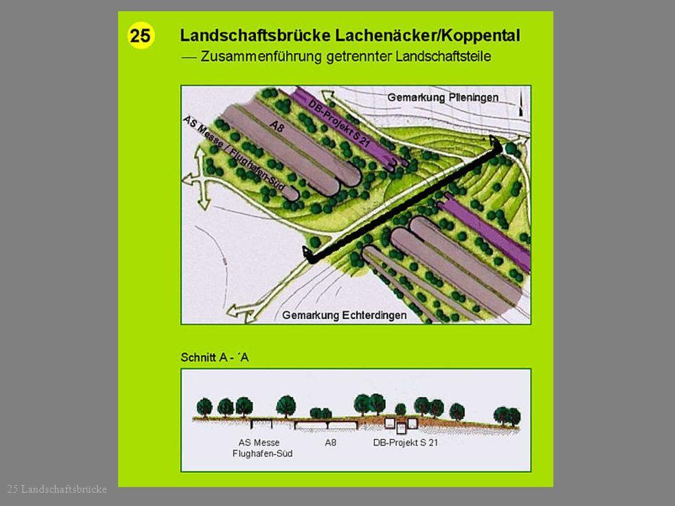 25 Landschaftsbrücke