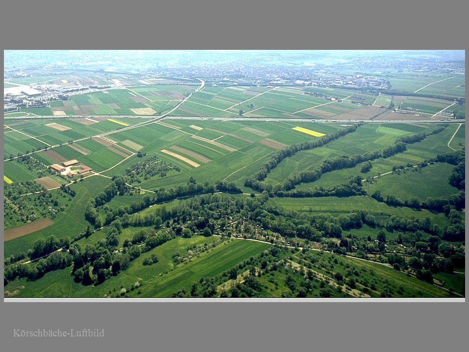 Körschbäche-Luftbild Mühlental Richtung Möhringen Vaihingen