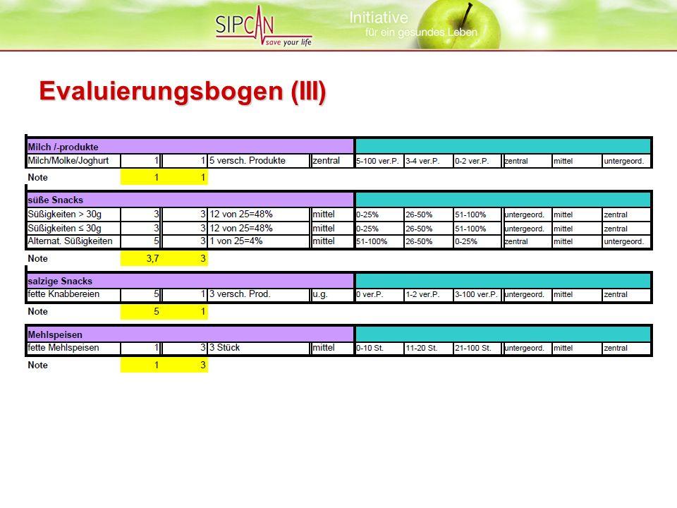 Evaluierungsbogen (III)