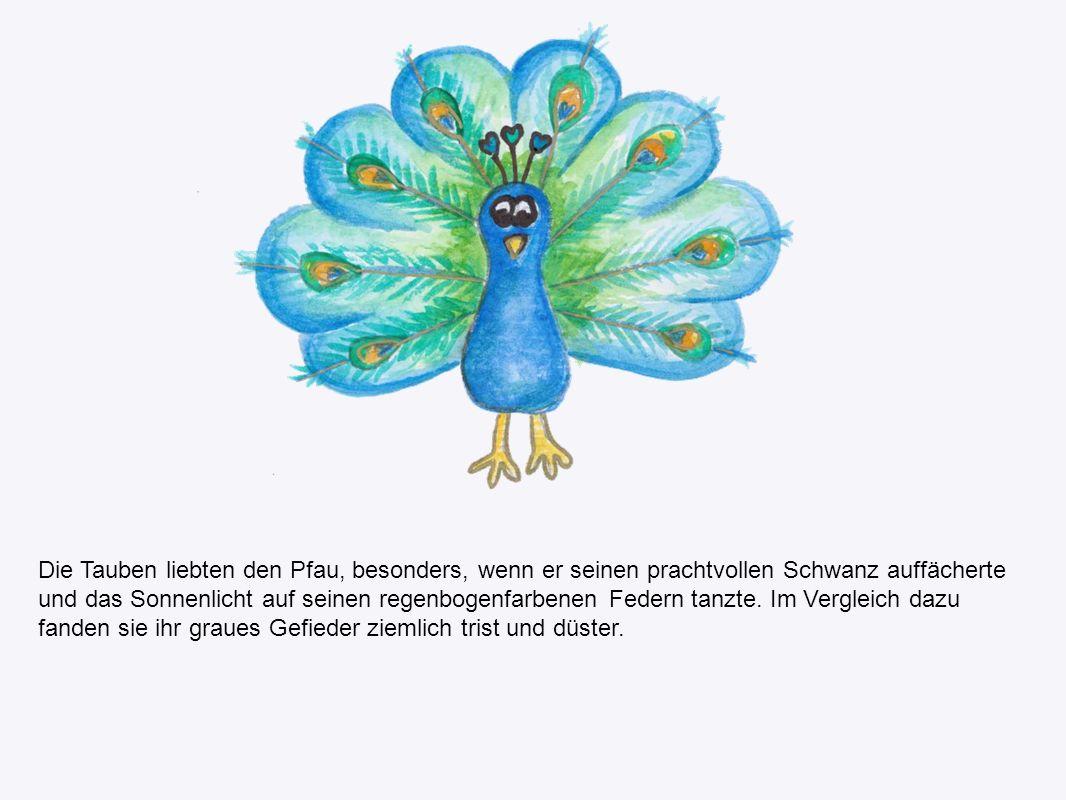 Die Tauben liebten den Pfau, besonders, wenn er seinen prachtvollen Schwanz auffächerte und das Sonnenlicht auf seinen regenbogenfarbenen Federn tanzte.