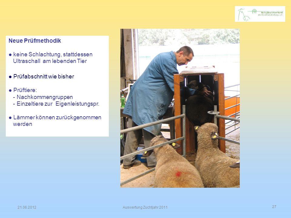 27 21.06.2012Auswertung Zuchtjahr 2011 Neue Prüfmethodik keine Schlachtung, stattdessen Ultraschall am lebenden Tier Prüfabschnitt wie bisher Prüftier