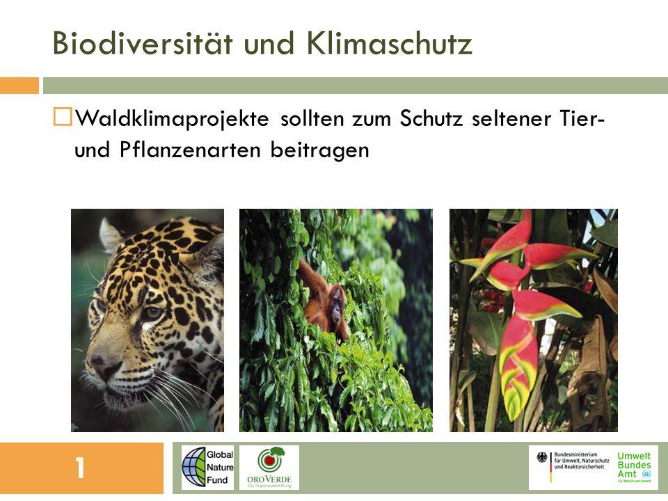 Biodiversität und Klimaschutz Waldklimaprojekte sollten zum Schutz seltener Tier- und Pflanzenarten beitragen 1