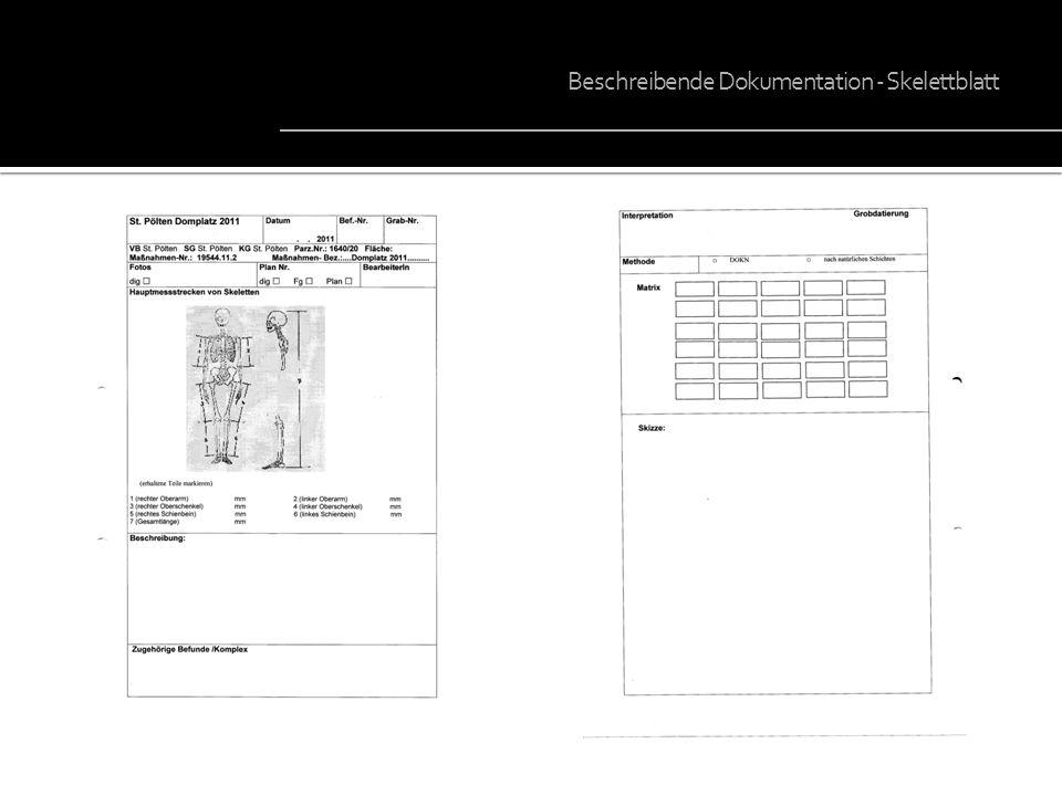 Beschreibende Dokumentation - Skelettblatt