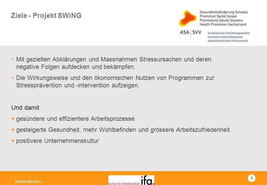 3 Teamreflexion Ziele - Projekt SWiNG Mit gezielten Abklärungen und Massnahmen Stressursachen und deren negative Folgen aufdecken und bekämpfen. Die W