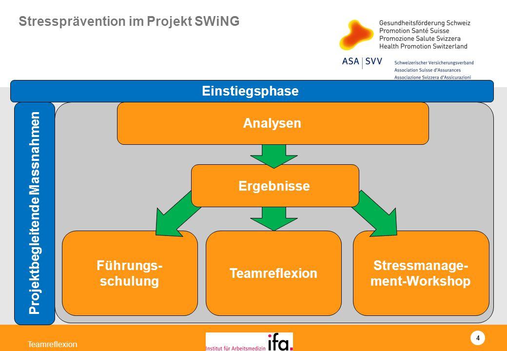 4 Teamreflexion Stressmanage- ment-Workshop Teamreflexion Führungs- schulung Ergebnisse Analysen Einstiegsphase Projektbegleitende Massnahmen Stresspr