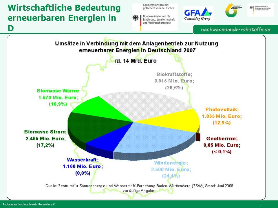 Fachagentur Nachwachsende Rohstoffe e.V., Wirtschaftliche Bedeutung erneuerbaren Energien in D