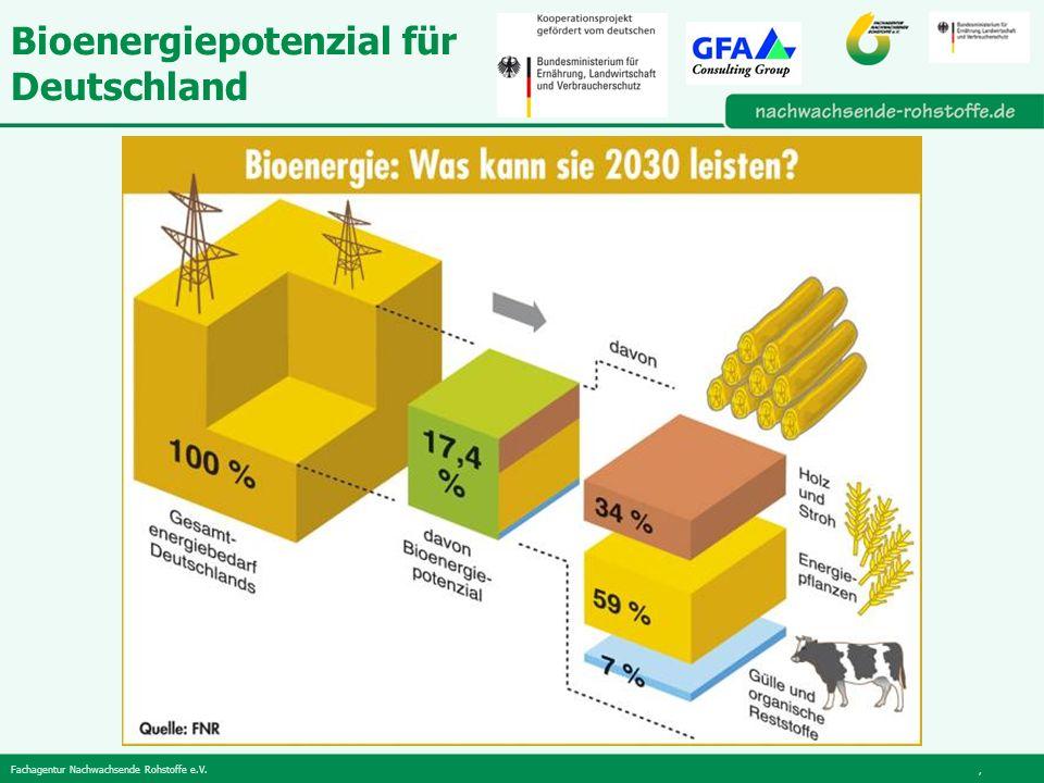 Fachagentur Nachwachsende Rohstoffe e.V., Bioenergiepotenzial für Deutschland