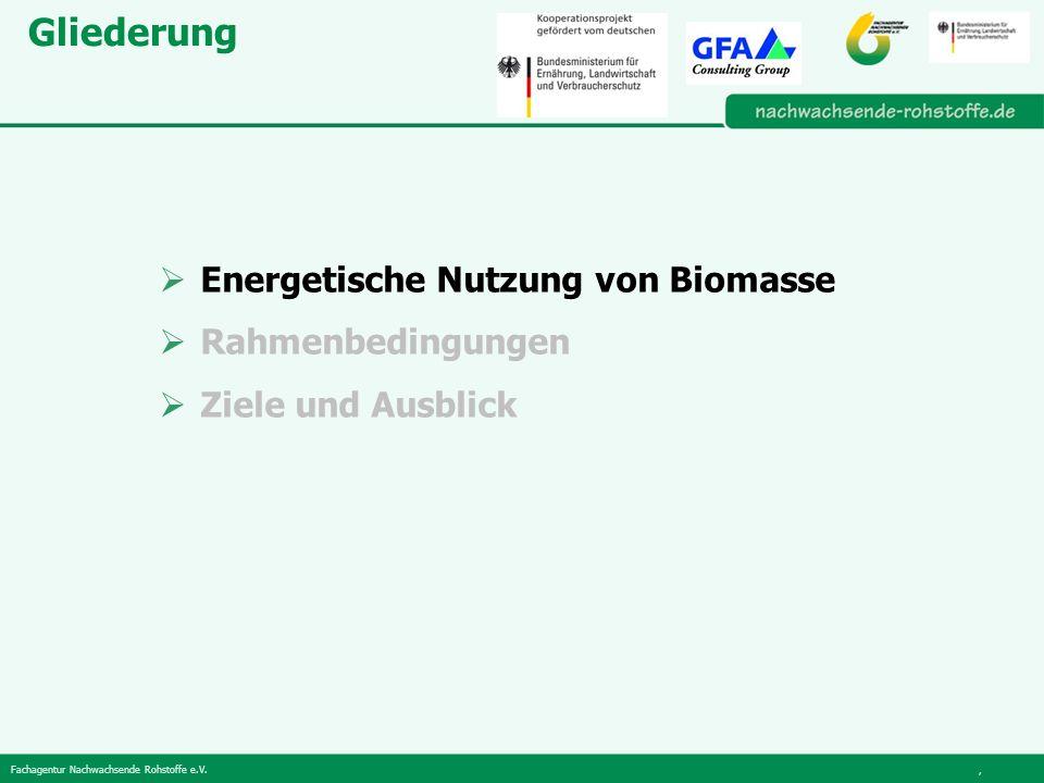 Fachagentur Nachwachsende Rohstoffe e.V., Gliederung Energetische Nutzung von Biomasse Rahmenbedingungen Ziele und Ausblick