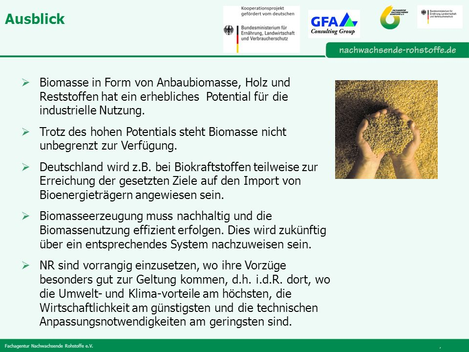 Fachagentur Nachwachsende Rohstoffe e.V., Ausblick Biomasse in Form von Anbaubiomasse, Holz und Reststoffen hat ein erhebliches Potential für die industrielle Nutzung.