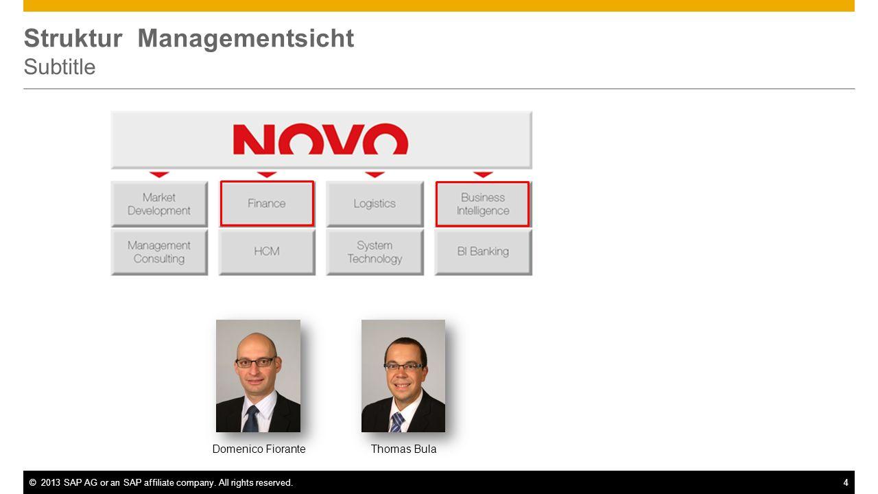 ©2013 SAP AG or an SAP affiliate company. All rights reserved.4 Struktur Managementsicht Subtitle Domenico FioranteThomas Bula