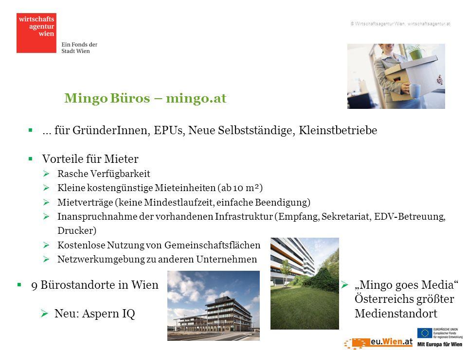 Mingo Büros – mingo.at … für GründerInnen, EPUs, Neue Selbstständige, Kleinstbetriebe Vorteile für Mieter Rasche Verfügbarkeit Kleine kostengünstige M