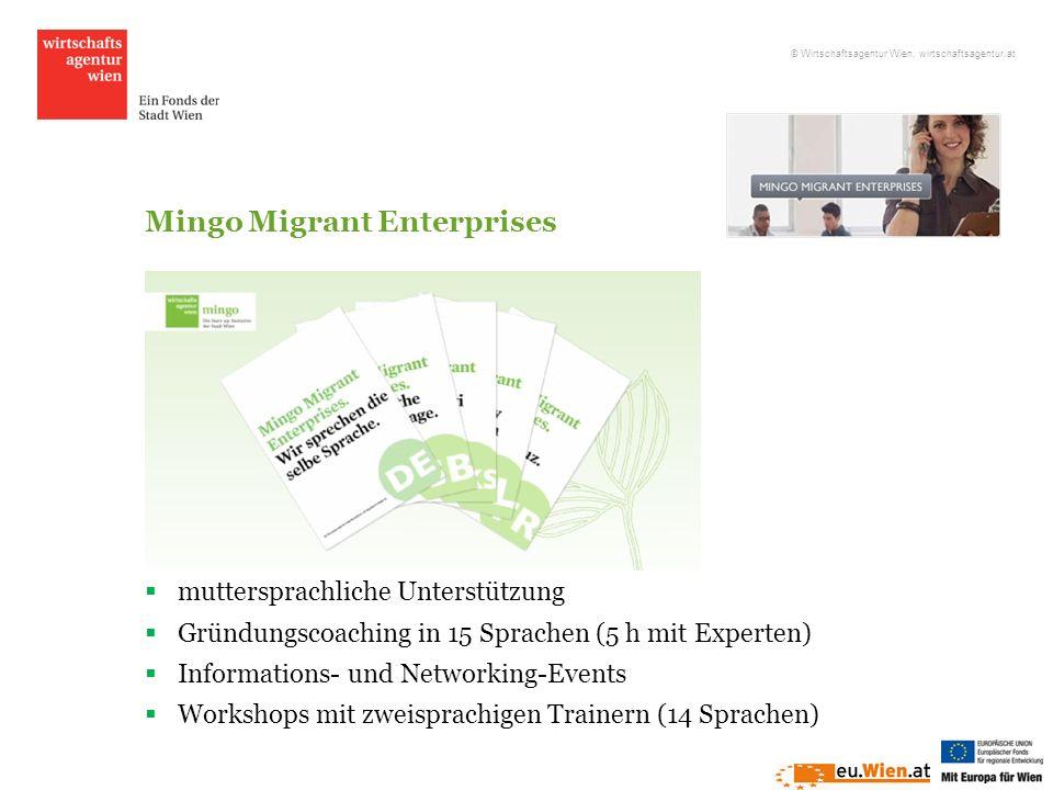 Mingo Migrant Enterprises muttersprachliche Unterstützung Gründungscoaching in 15 Sprachen (5 h mit Experten) Informations- und Networking-Events Work