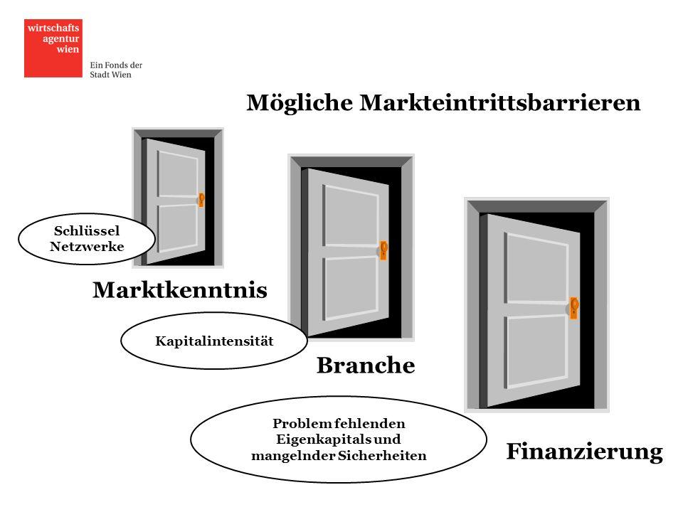 Mögliche Markteintrittsbarrieren Problem fehlenden Eigenkapitals und mangelnder Sicherheiten Finanzierung Branche Marktkenntnis Kapitalintensität Schl