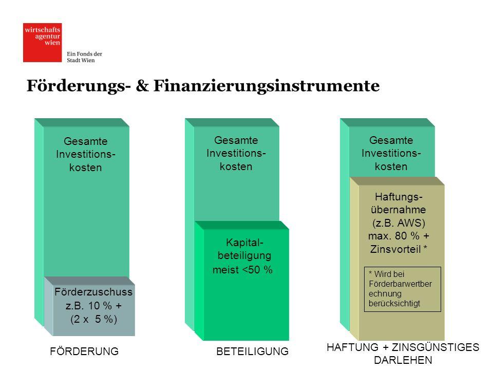 Förderungs- & Finanzierungsinstrumente Gesamte Investitions- kosten Förderzuschuss z.B. 10 % + (2 x 5 %) Kapital- beteiligung meist <50 % Haftungs- üb