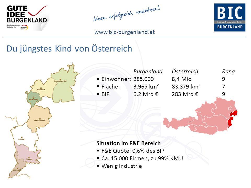 www.bic-burgenland.at F&E im Burgenland Fakten F&E Quote 2010: 0,6%(Ö: 2,76%) Ziel für 2010: 1,2%(Ö: 3,76%) F&E Ausgaben: 36 Mio F&E Einrichtungen im Burgenland Potential Neugründungsrate7,4% Patenterfolgsquote72% MaturantenquotePlatz 1 in Österreich Beschäftigte bei Unternehmensgründungen2,6 (Platz 1 in Österreich)