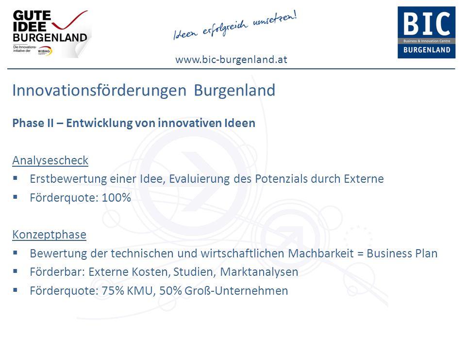 www.bic-burgenland.at Innovationsförderungen Burgenland Phase II – Entwicklung von innovativen Ideen Analysescheck Erstbewertung einer Idee, Evaluieru
