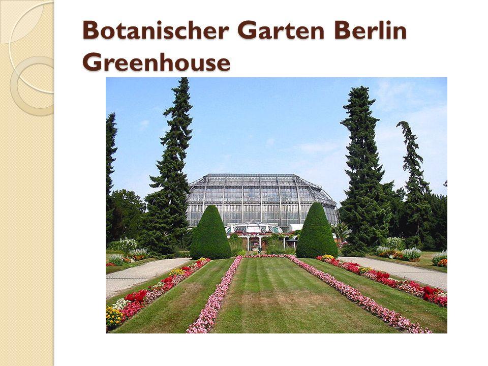 Botanischer Garten Berlin Greenhouse