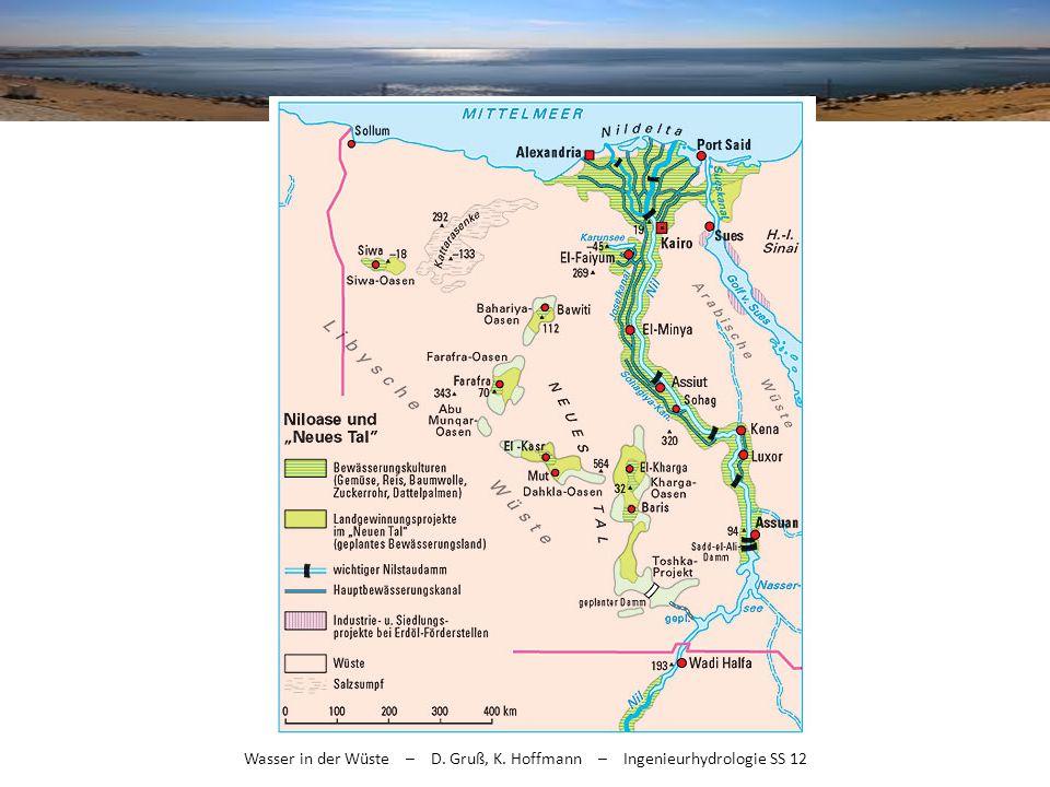 Wasser in der Wüste – D. Gruß, K. Hoffmann – Ingenieurhydrologie SS 12
