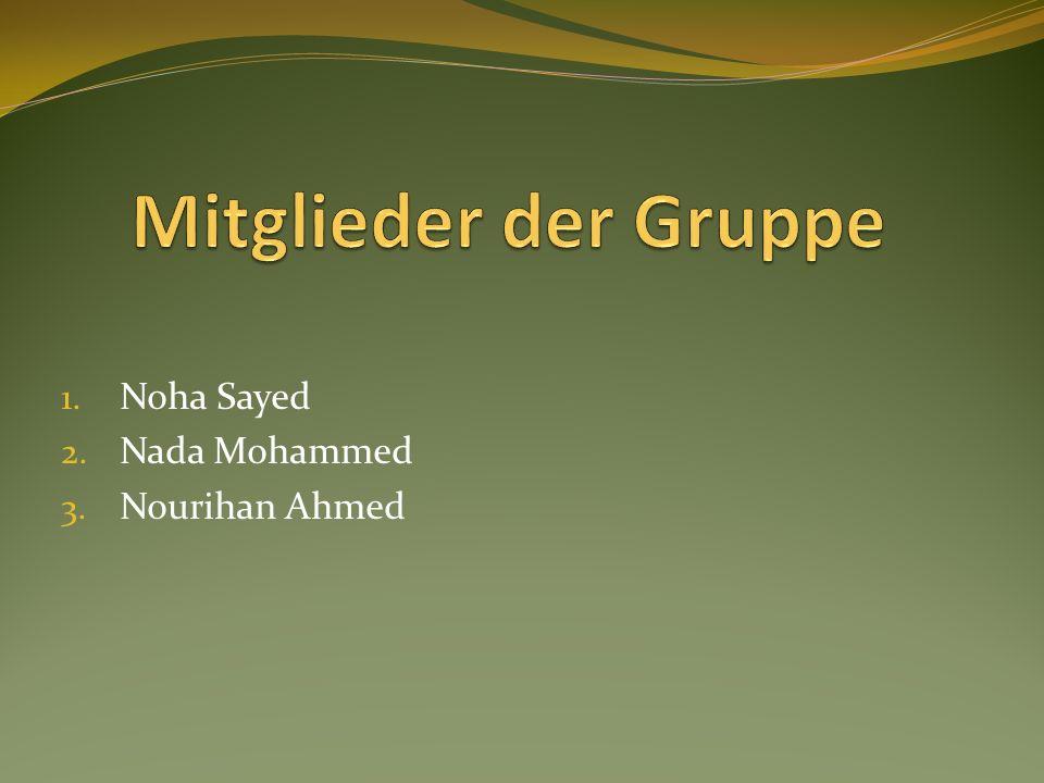 1. Noha Sayed 2. Nada Mohammed 3. Nourihan Ahmed