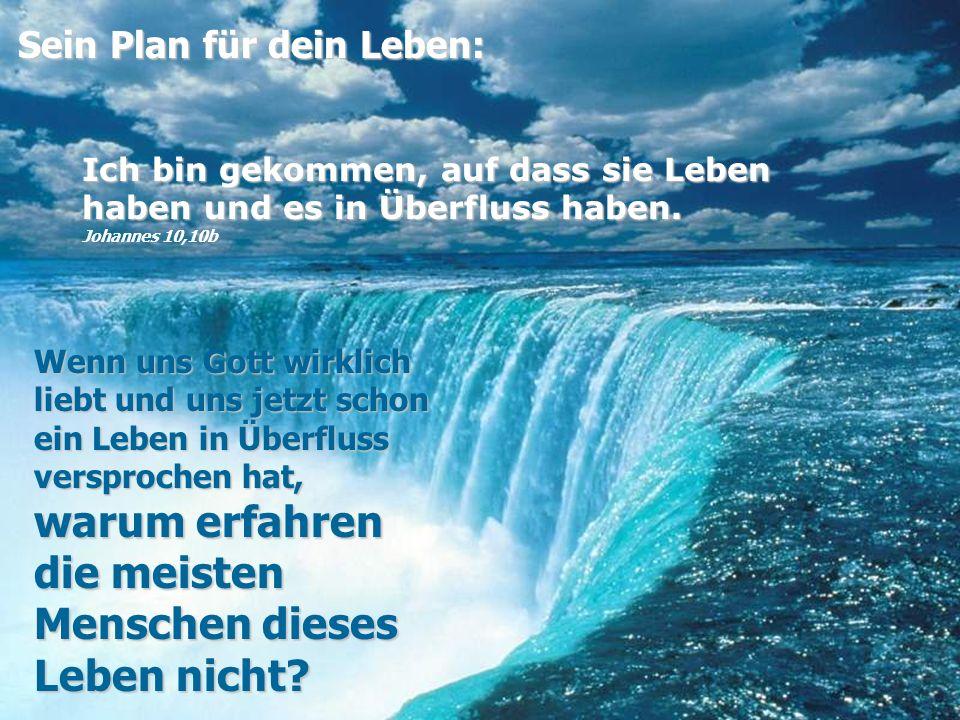 Sein Plan für dein Leben: Sein Plan für dein Leben: Ich bin gekommen, auf dass sie Leben haben und es in Überfluss haben.