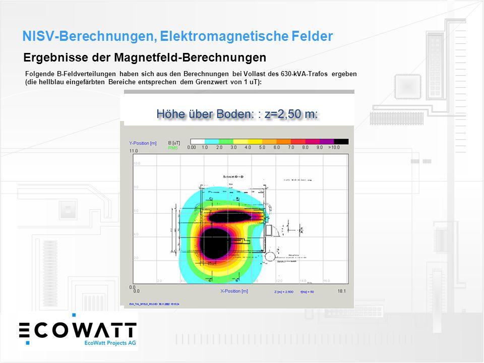 Ergebnisse der Magnetfeld-Berechnungen Folgende B-Feldverteilungen haben sich aus den Berechnungen bei Vollast des 630-kVA-Trafos ergeben (die hellbla