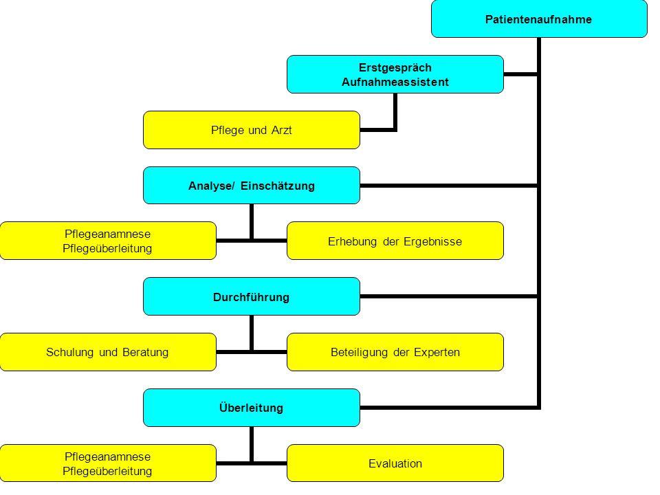 Patientenaufnahme Analyse/ Einschätzung Pflegeanamnese Pflegeüberleitung Erhebung der Ergebnisse Durchführung Schulung und Beratung Beteiligung der Ex