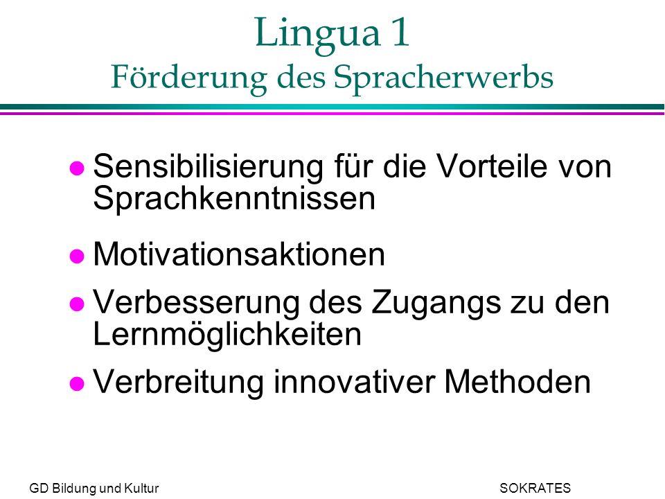 GD Bildung und Kultur SOKRATES Lingua 1 Förderung des Spracherwerbs l Sensibilisierung für die Vorteile von Sprachkenntnissen l Motivationsaktionen l Verbesserung des Zugangs zu den Lernmöglichkeiten l Verbreitung innovativer Methoden