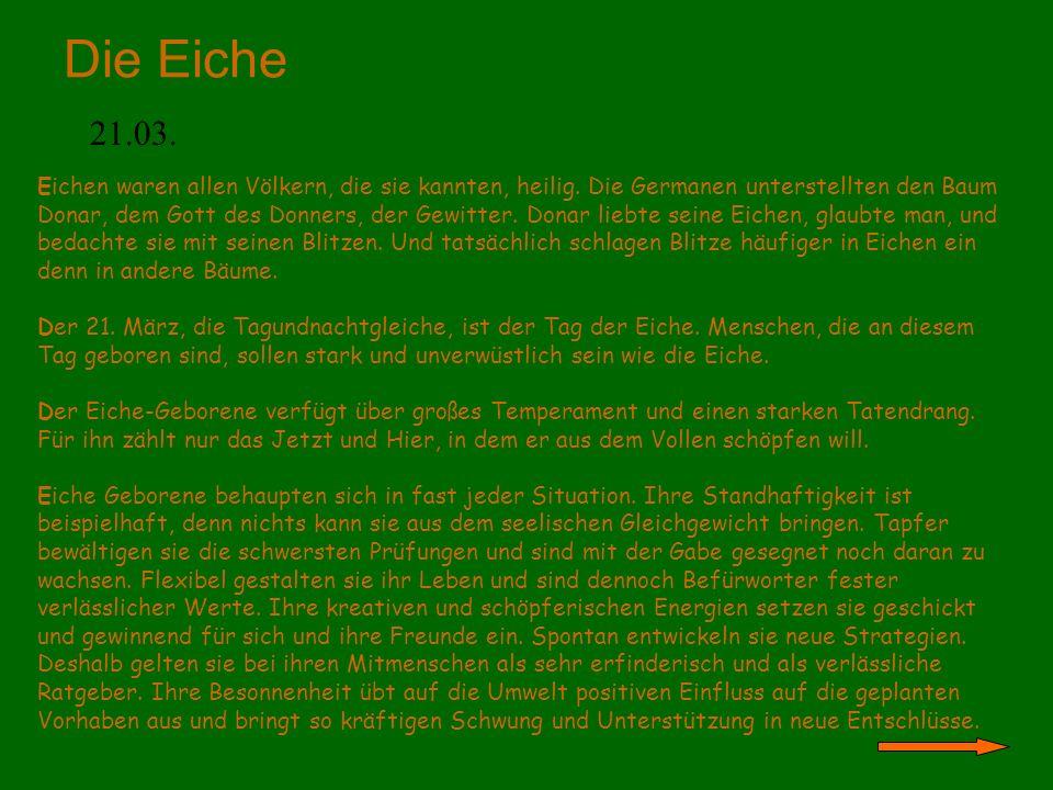 Die Eiche 21.03. Eichen waren allen Völkern, die sie kannten, heilig. Die Germanen unterstellten den Baum Donar, dem Gott des Donners, der Gewitter. D
