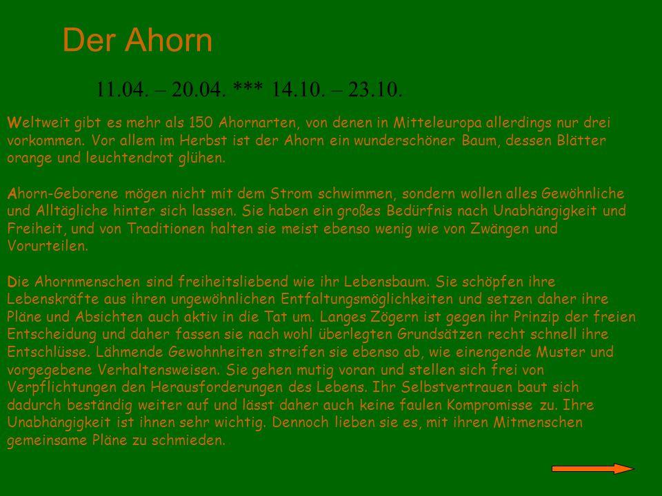 Der Ahorn 11.04. – 20.04. *** 14.10. – 23.10. Weltweit gibt es mehr als 150 Ahornarten, von denen in Mitteleuropa allerdings nur drei vorkommen. Vor a