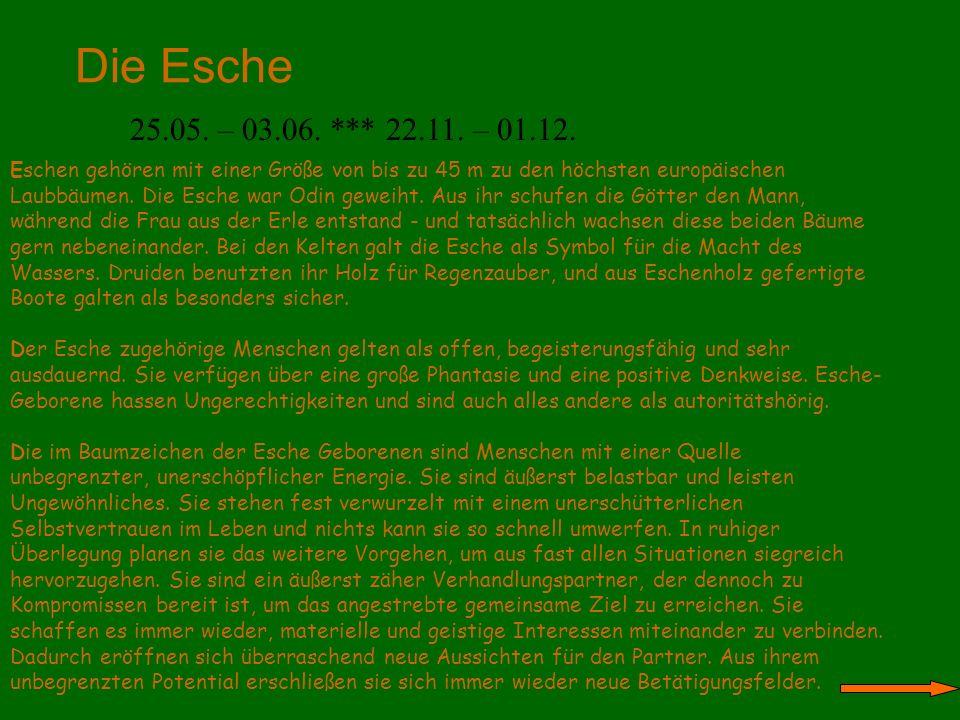 Die Esche 25.05. – 03.06. *** 22.11. – 01.12. Eschen gehören mit einer Größe von bis zu 45 m zu den höchsten europäischen Laubbäumen. Die Esche war Od
