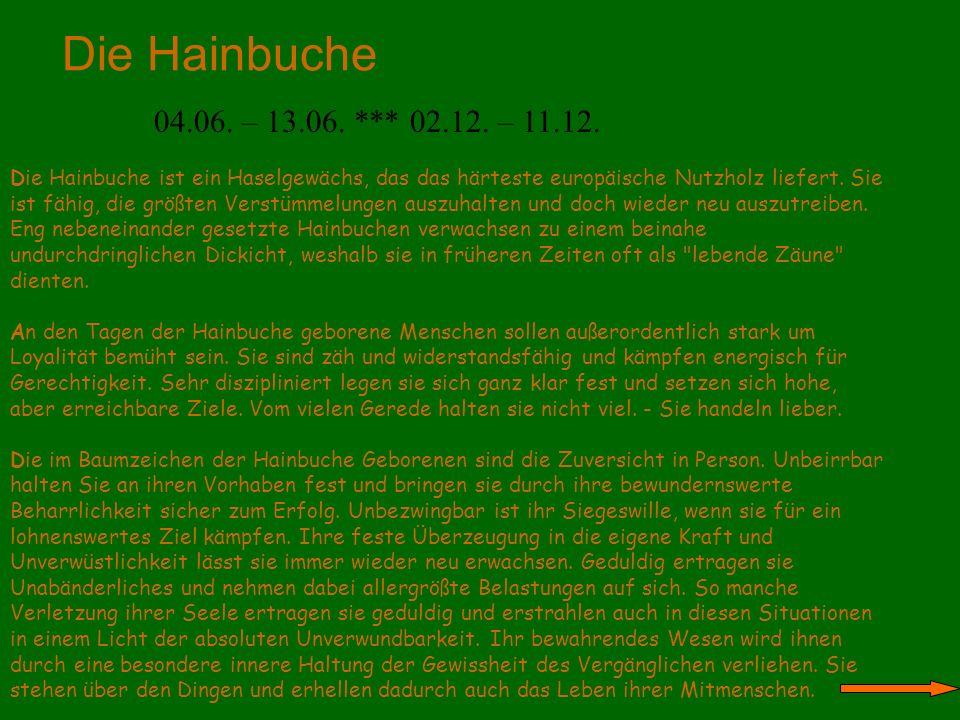 Die Hainbuche 04.06. – 13.06. *** 02.12. – 11.12. Die Hainbuche ist ein Haselgewächs, das das härteste europäische Nutzholz liefert. Sie ist fähig, di