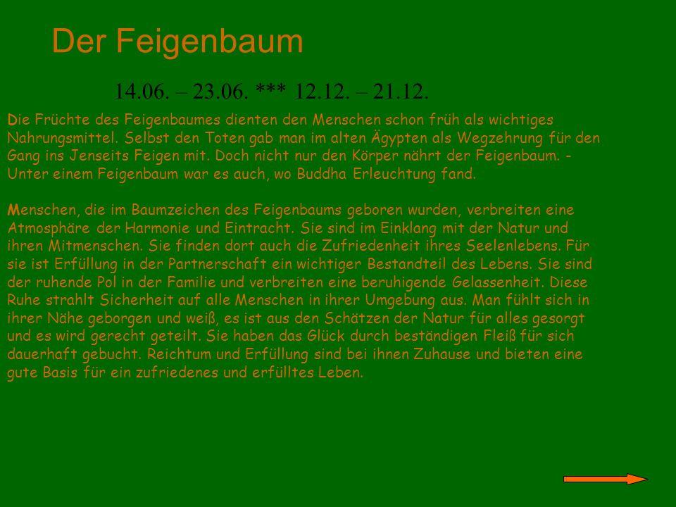 Der Feigenbaum 14.06. – 23.06. *** 12.12. – 21.12. Die Früchte des Feigenbaumes dienten den Menschen schon früh als wichtiges Nahrungsmittel. Selbst d
