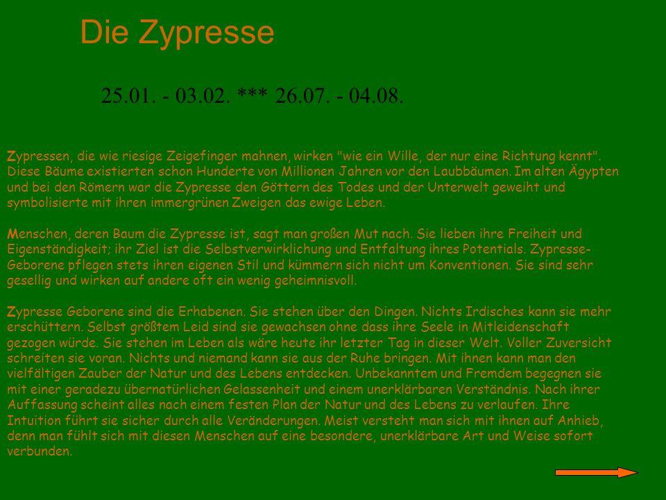 Die Pappel 04.02.- 08.02. *** 01.05. - 14.05. *** 05.08.