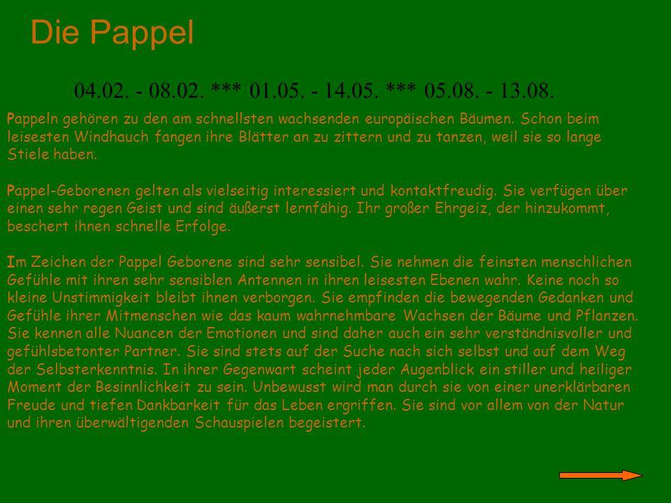 Die Pappel 04.02. - 08.02. *** 01.05. - 14.05. *** 05.08. - 13.08. Pappeln gehören zu den am schnellsten wachsenden europäischen Bäumen. Schon beim le