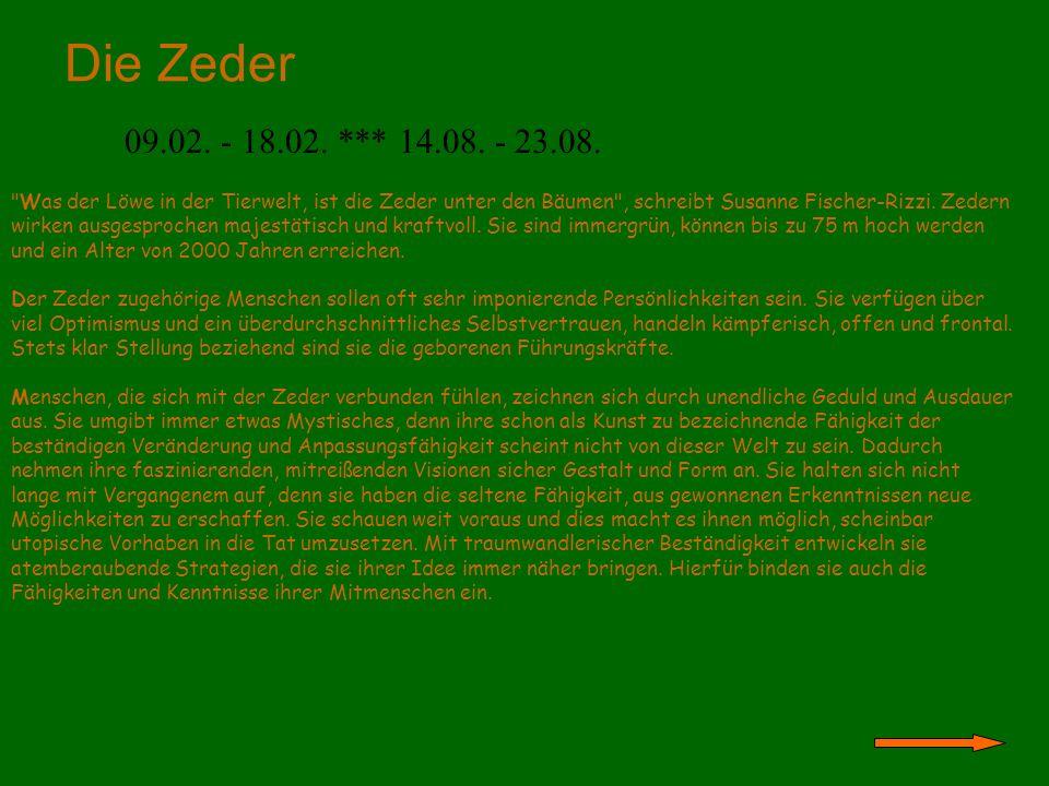 Die Zeder 09.02. - 18.02. *** 14.08. - 23.08.