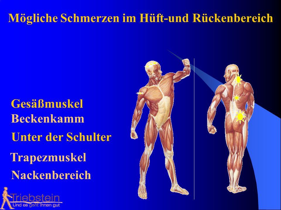 Mögliche Schmerzen im Hüft-und Rückenbereich Beckenkamm Gesäßmuskel Unter der Schulter Trapezmuskel Nackenbereich