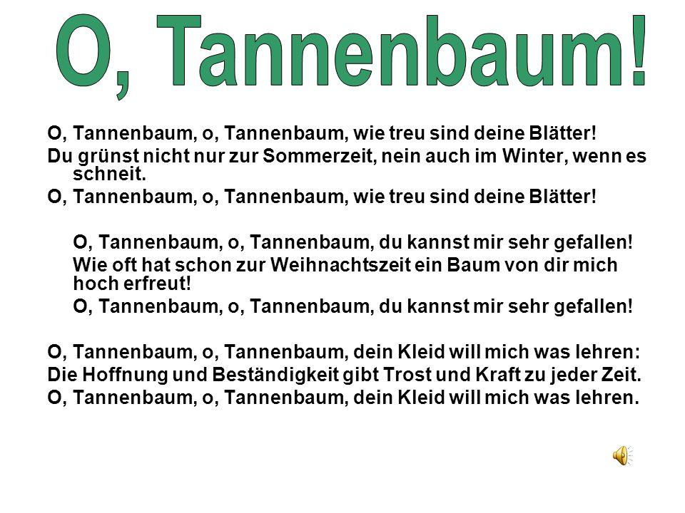 O, Tannenbaum, o, Tannenbaum, wie treu sind deine Blätter! Du grünst nicht nur zur Sommerzeit, nein auch im Winter, wenn es schneit. O, Tannenbaum, o,