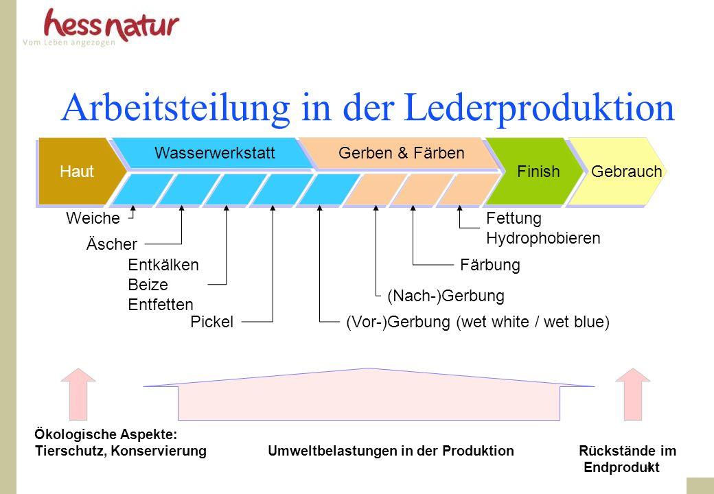4 Arbeitsteilung in der Lederproduktion Haut Wasserwerkstatt Gerben & Färben Finish Weiche Äscher Pickel Entkälken Beize Entfetten (Vor-)Gerbung (wet