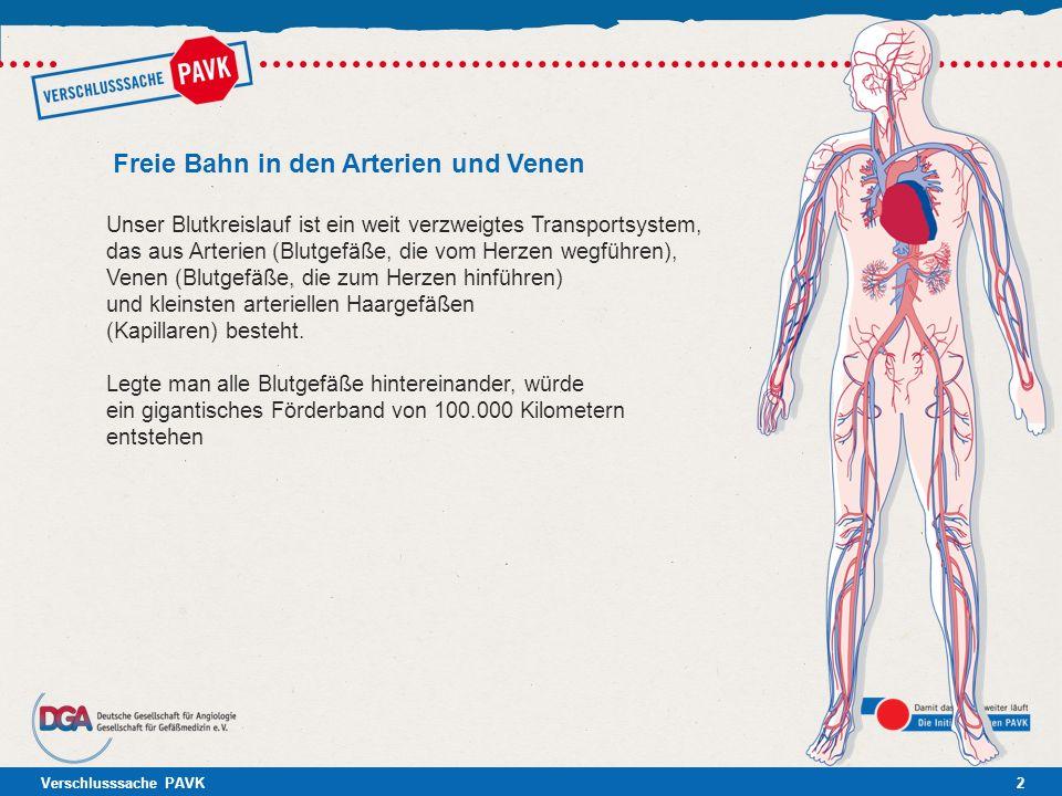 Verschlusssache PAVK2 Freie Bahn in den Arterien und Venen Unser Blutkreislauf ist ein weit verzweigtes Transportsystem, das aus Arterien (Blutgefäße,