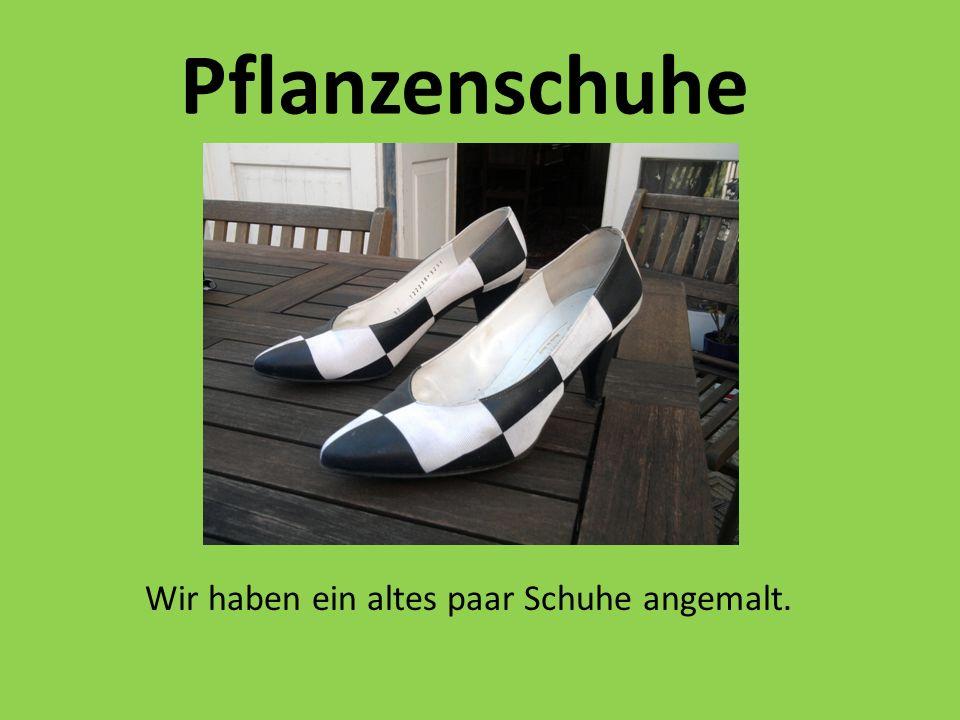 Pflanzenschuhe Wir haben ein altes paar Schuhe angemalt.