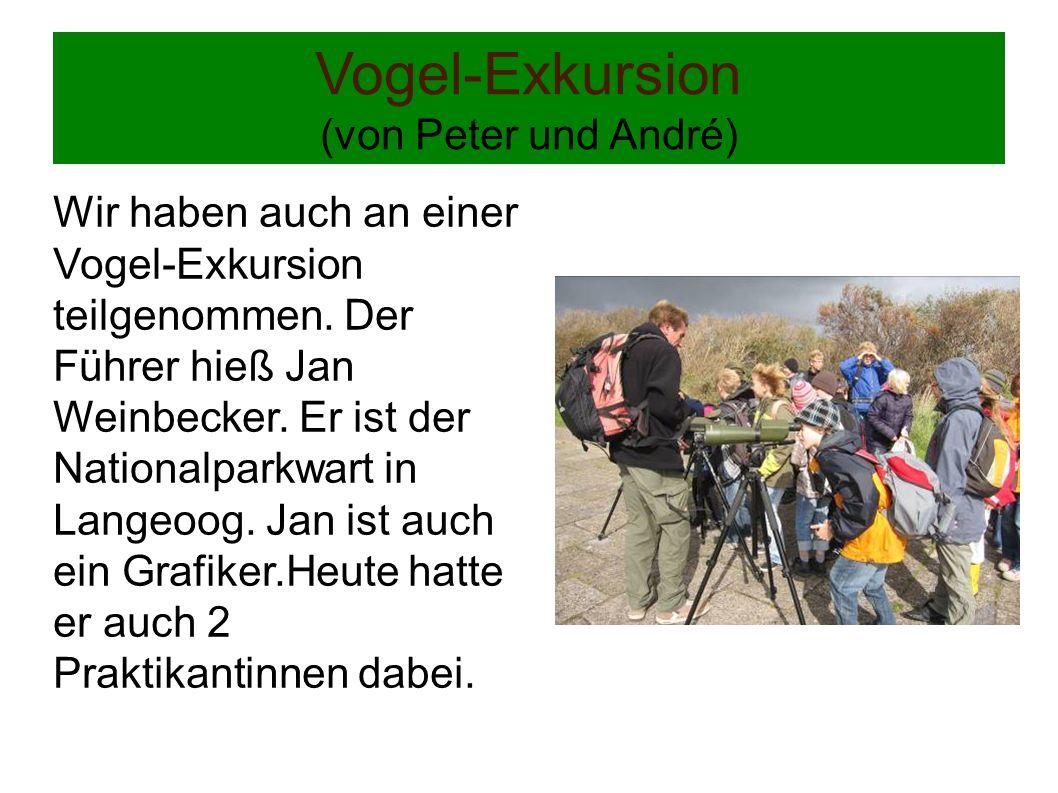 Vogel-Exkursion (von Peter und André) Wir haben auch an einer Vogel-Exkursion teilgenommen. Der Führer hieß Jan Weinbecker. Er ist der Nationalparkwar