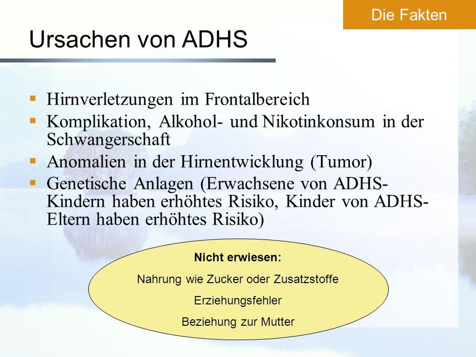 Ursachen von ADHS Hirnverletzungen im Frontalbereich Komplikation, Alkohol- und Nikotinkonsum in der Schwangerschaft Anomalien in der Hirnentwicklung