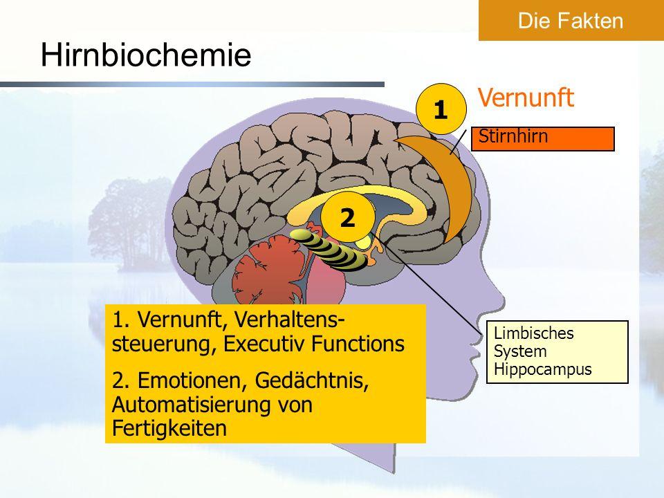 Hirnbiochemie 1. Vernunft, Verhaltens- steuerung, Executiv Functions 2. Emotionen, Gedächtnis, Automatisierung von Fertigkeiten Limbisches System Hipp