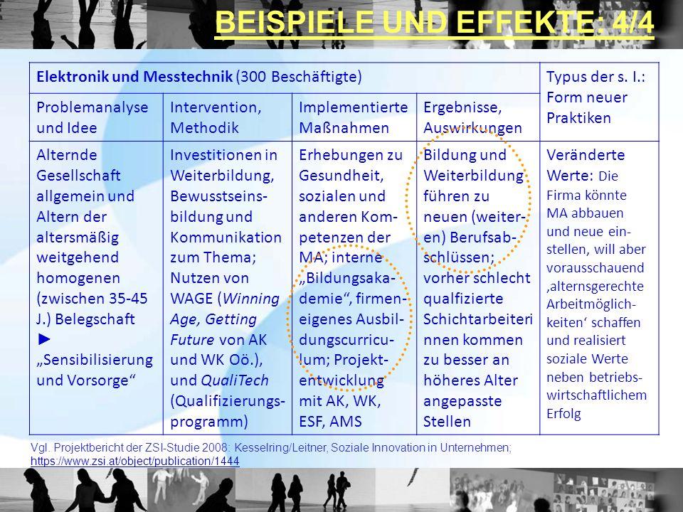 Elektronik und Messtechnik (300 Beschäftigte)Typus der s. I.: Form neuer Praktiken Problemanalyse und Idee Intervention, Methodik Implementierte Maßna