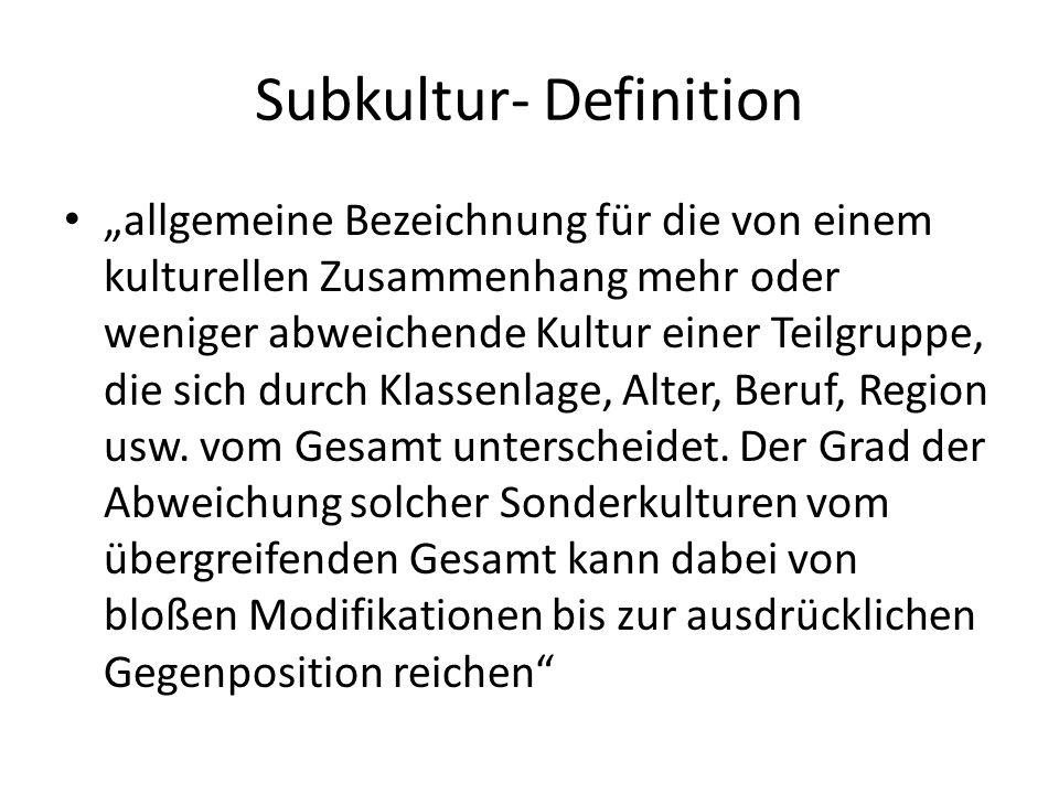 Typologie Subkultur: Freiwillig: alternative Wert- und Normenstrukturen Unfreiwillig: Diskriminierung und Unterprivilegierung Progressiv: Veränderung bzw.
