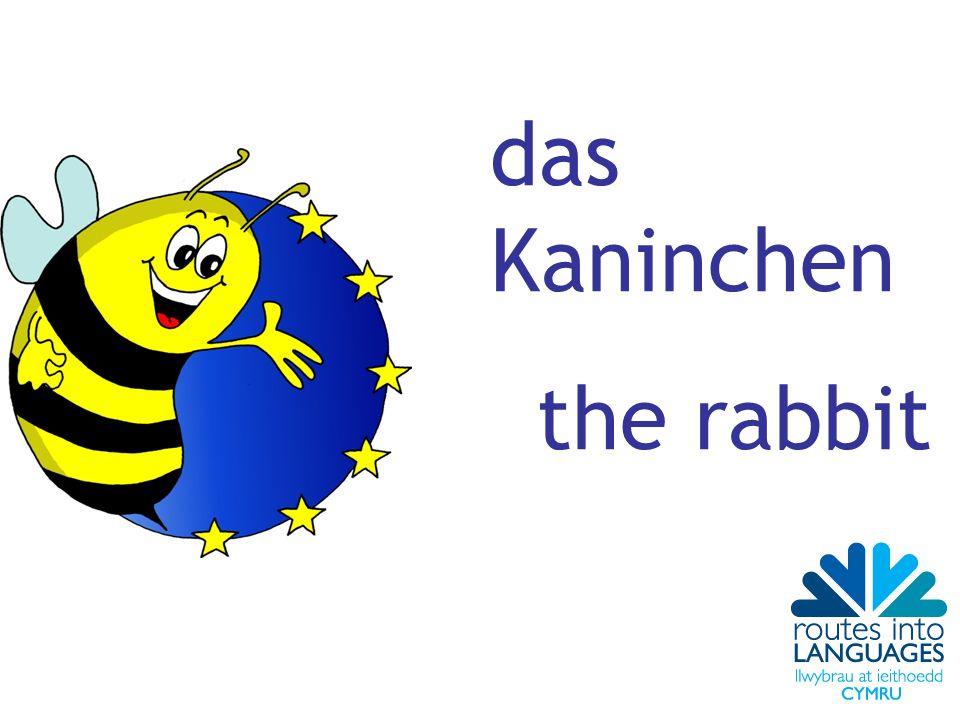 das Kaninchen the rabbit