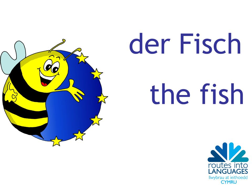der Fisch the fish